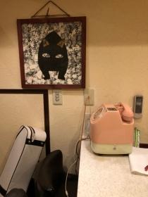 懐かしいピンク電話がある光景